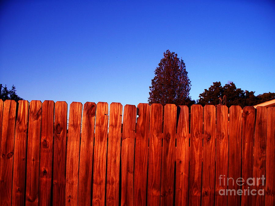 Fence Photograph - A Zen Kind Of Thing by Chuck Taylor