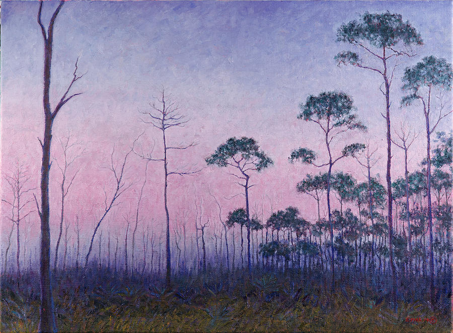 Abaco Pines at Dusk by Ritchie Eyma