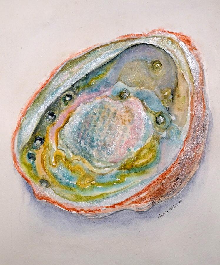 Abalone Study #2 by Anna Jacke
