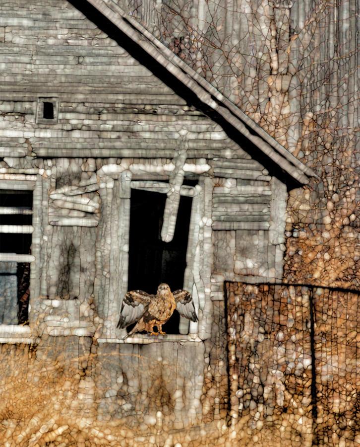 Landscape Painting - Abandoned Barn by Jack Zulli