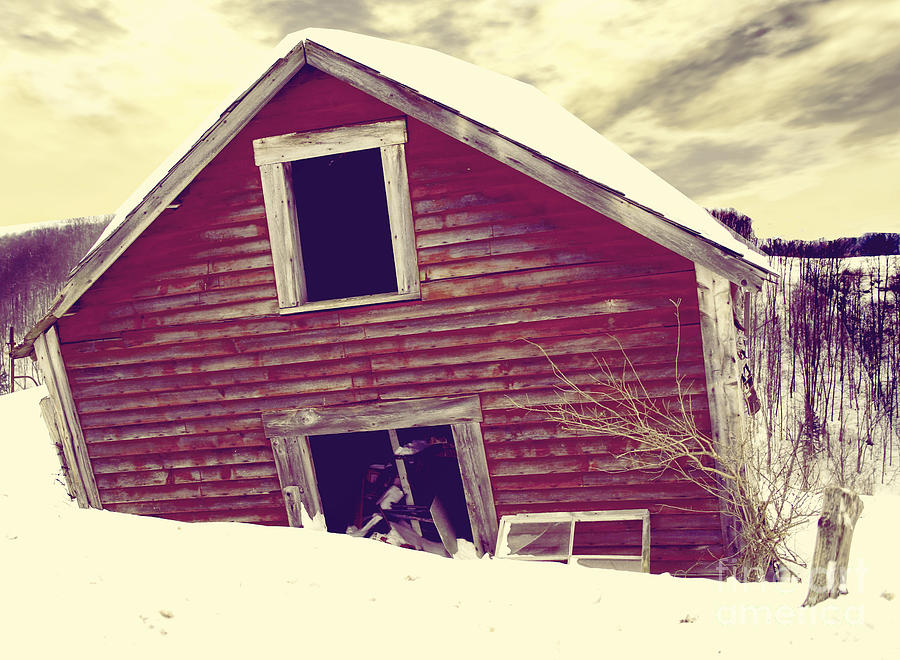 Old Barn Painting - Abandoned Barn by Mindy Sommers