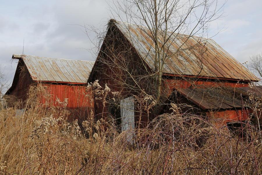 Abandoned Barns Photograph