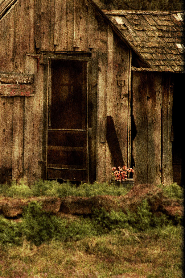 Old Home Photograph - Abandoned by Bonnie Bruno