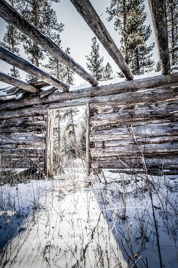 Old Photograph - Abandoned Cabin by Bryan Moore