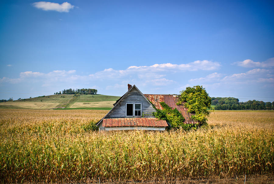 Abandoned Photograph - Abandoned Corn Field House by Douglas Barnett