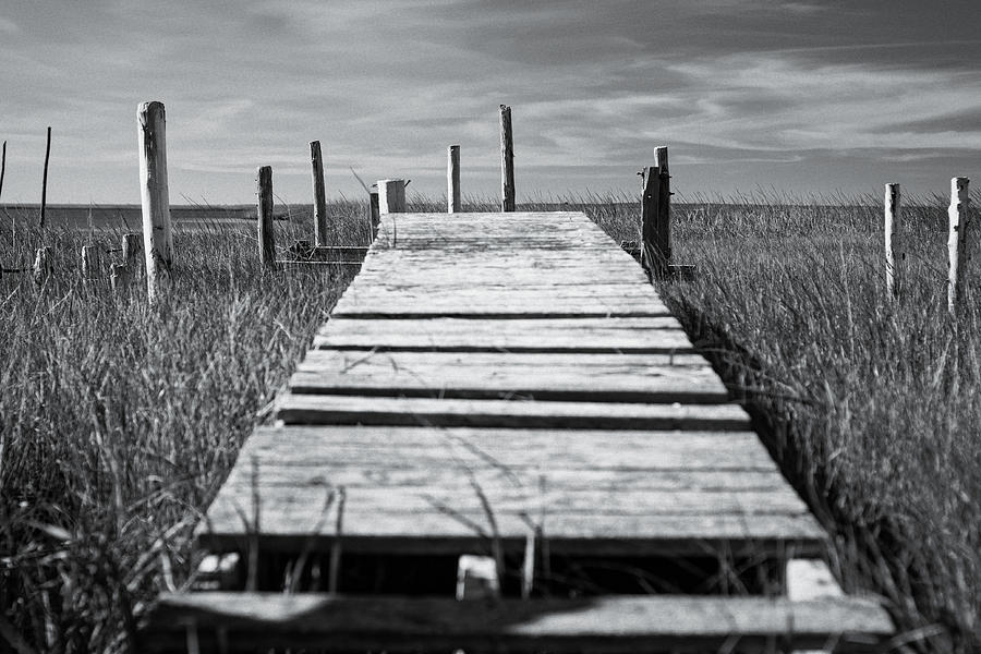 Abandoned Dock by Shawn Colborn