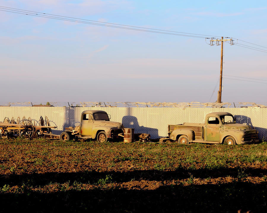 Abandoned Photograph - Abandoned Farm Trucks Tracy Ca by Troy Montemayor