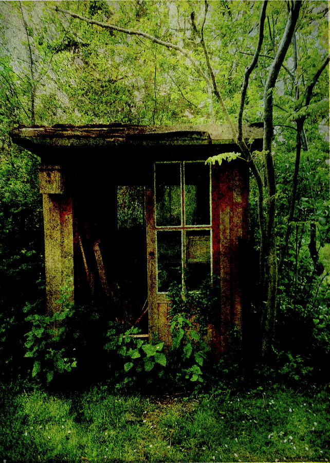 Undergrowth Digital Art - Abandoned Hideaway by Sarah Vernon