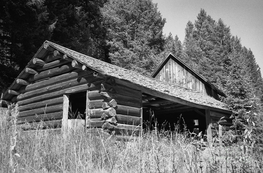 Cabin Photograph - Abandoned Homestead by Richard Rizzo
