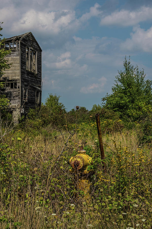 Abandoned Photograph - Abandoned Hydrant by Lindy Grasser
