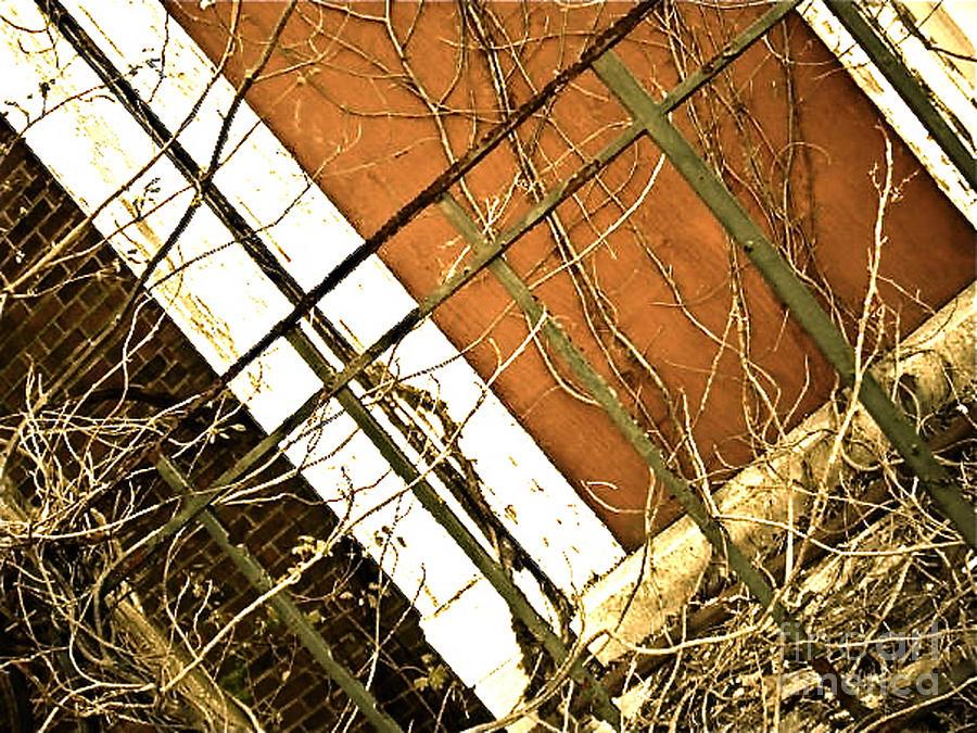 Abandoned Photograph - Abandoned Kp 4 by Simonne Mina