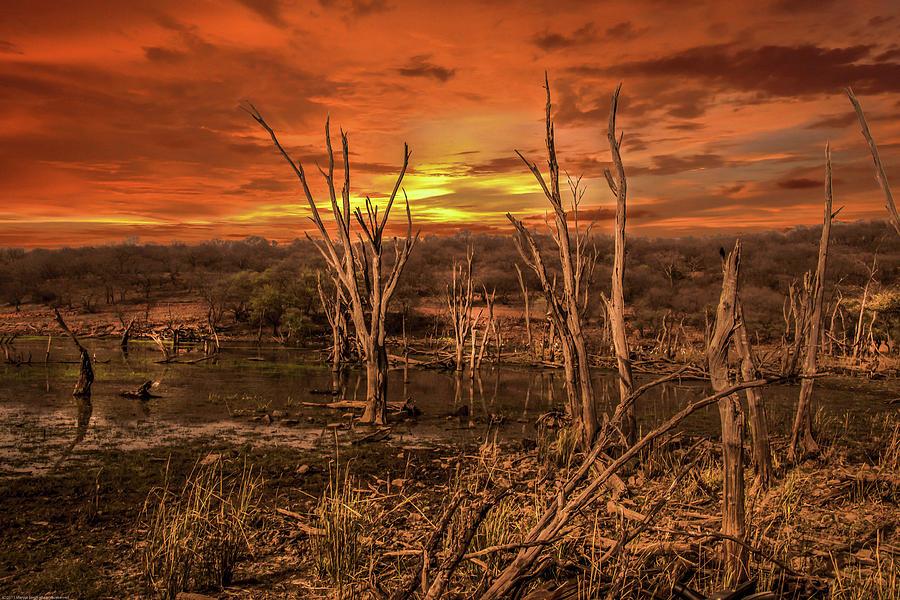 Desert Photograph - Abandoned Land by Manjot Singh Sachdeva