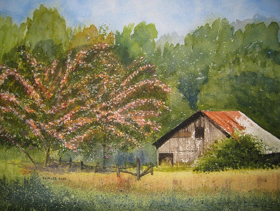 Mimosa Trees Painting - Abandoned Mimosas by Shirley Braithwaite Hunt