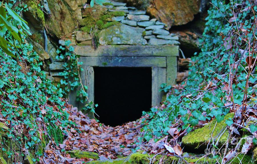 Mine Photograph - Abandoned Mine by Keri West