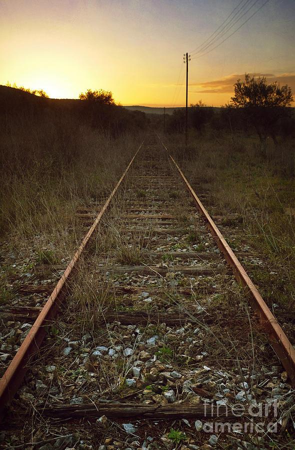 Railway Photograph - Abandoned Railway by Carlos Caetano