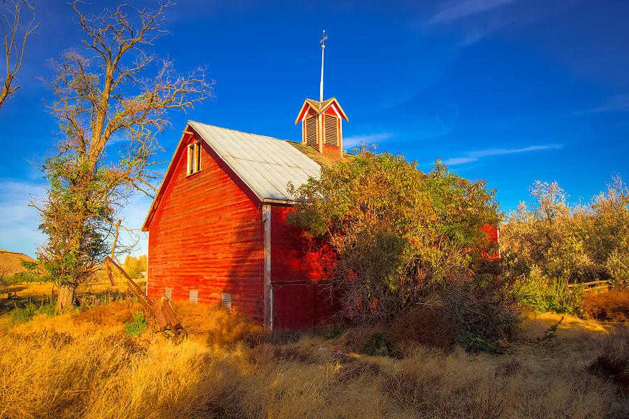 Red Barn Photograph - Abandoned Red Barn by Penny Miller