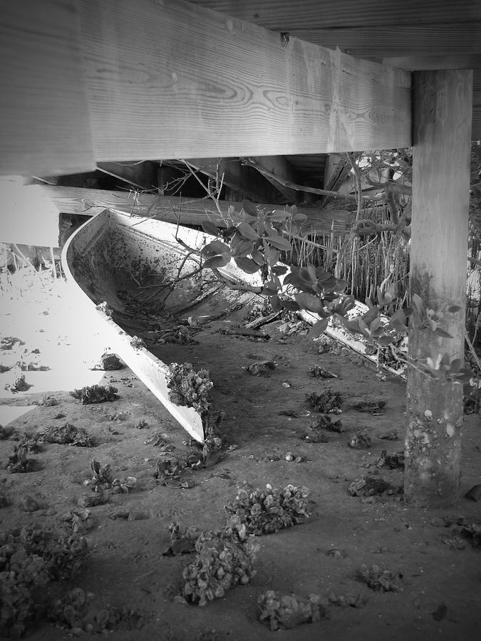 Ocean Photograph - Abandoned Sailboat by Megan Verzoni