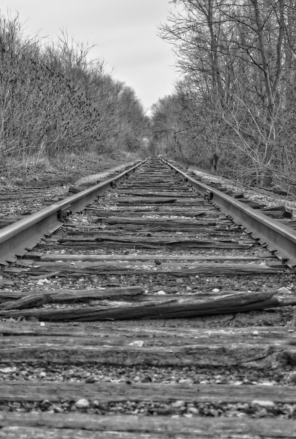 Train Photograph - Abandoned Tracks by Michael Colgate
