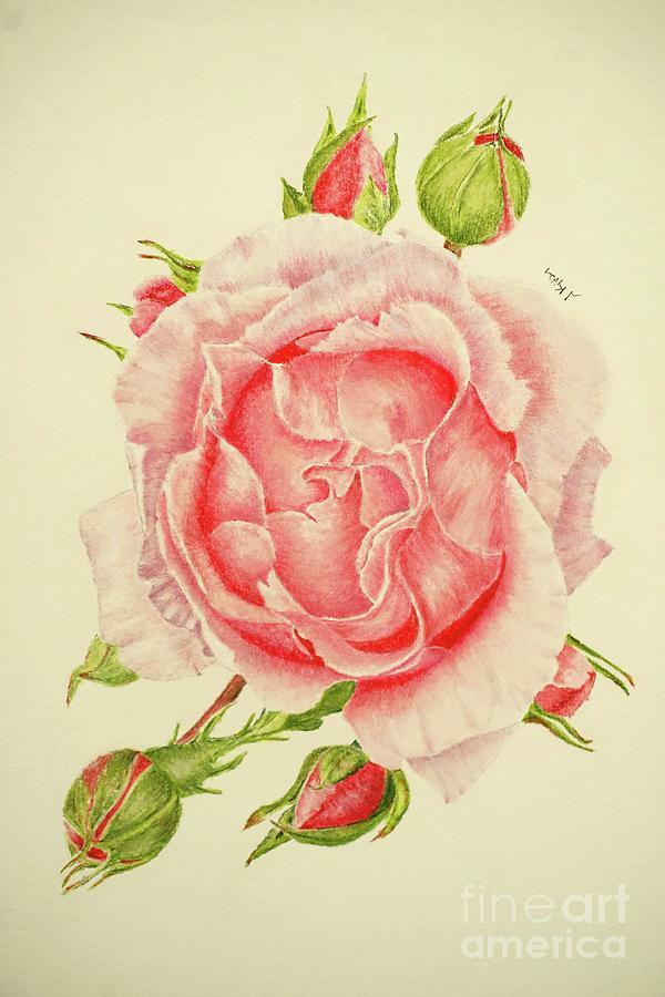 Floral Pastel - Abbi Rose by Jackie Kirby