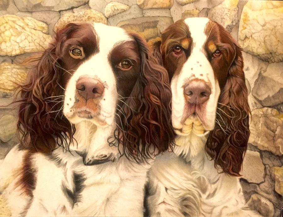Dogs Drawing - Abby And Romeo by David Hoque