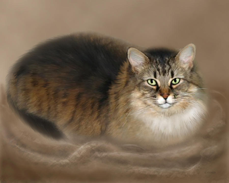 Cat Painting - Abby by Barbara Hymer