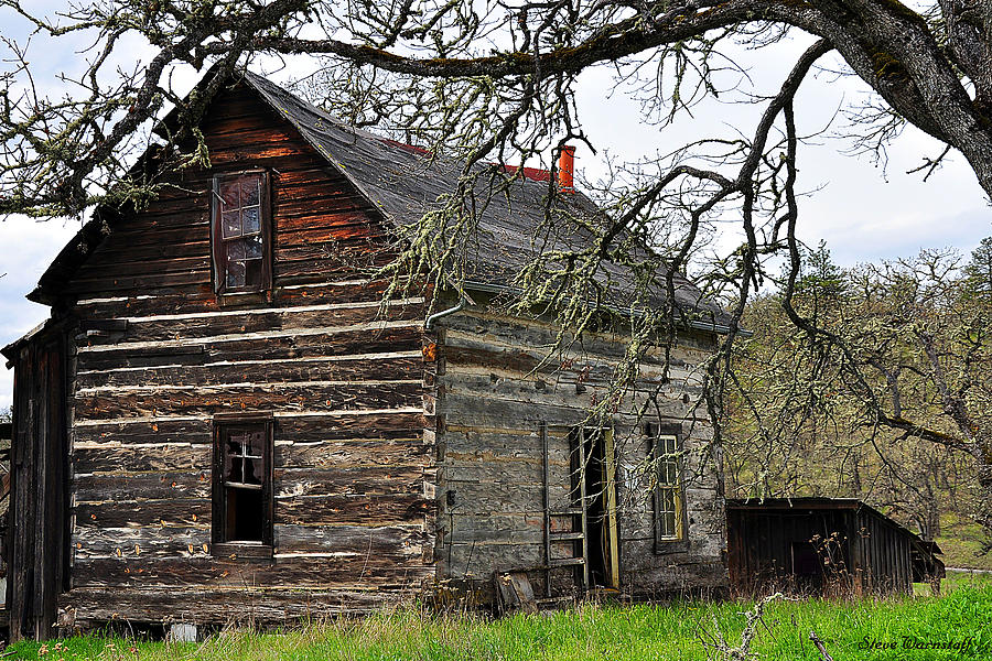 Oregon Photograph - Abes Cabin by Steve Warnstaff