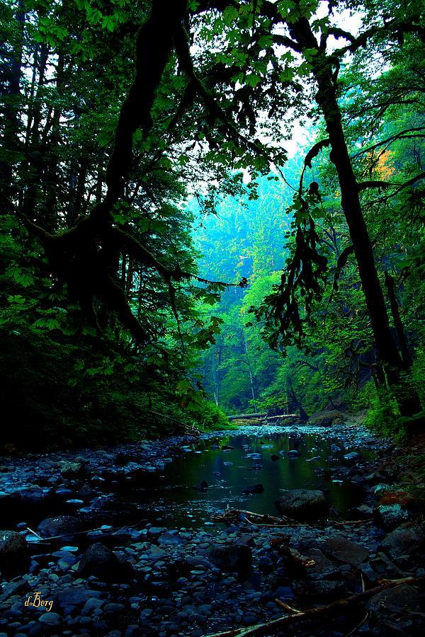 Abiqua Creek by Douglas Berg