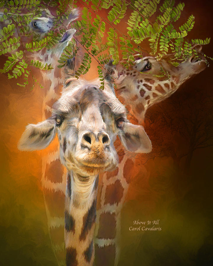 Giraffe Mixed Media - Above It All by Carol Cavalaris