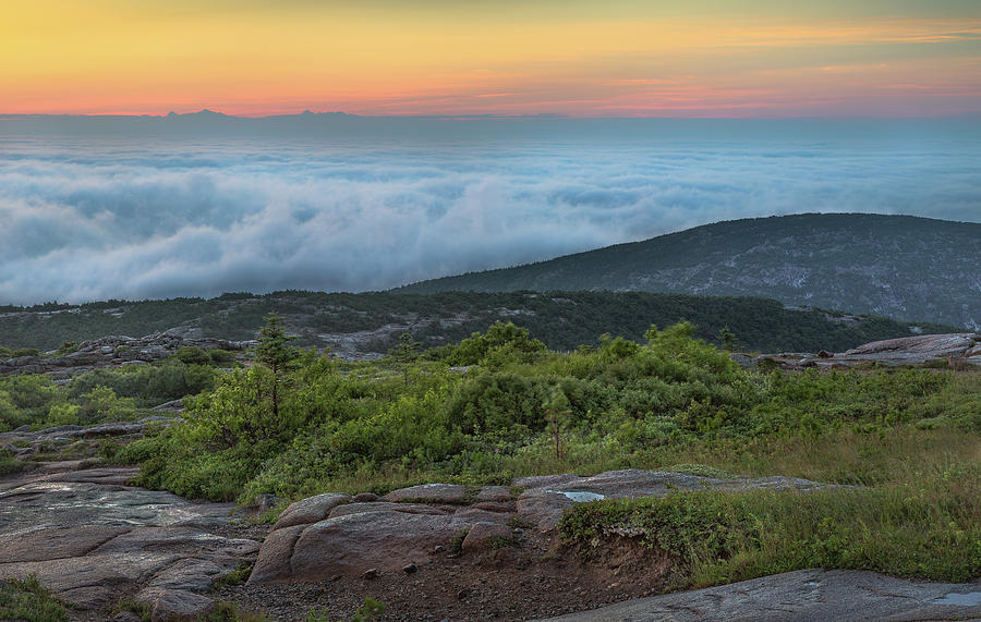 Acadia Photograph - Above The Clouds by Arti Panchal
