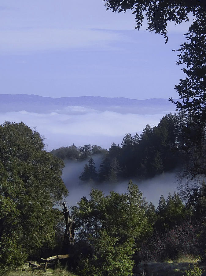 California Photograph - Above The  Clouds by Karen  W Meyer