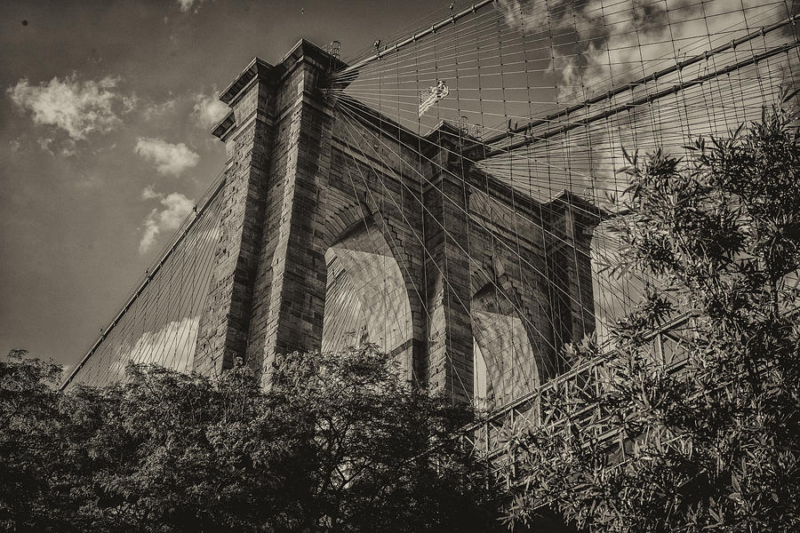 Brooklyn Photograph - Above The Fray by Jeff Watts