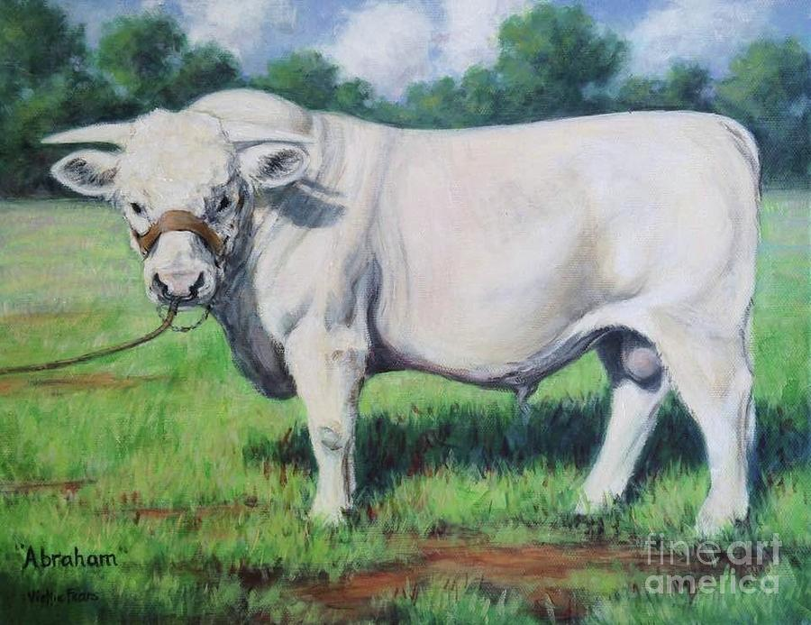 Bull Painting - Abraham, French Charolais Bull by Vickie Fears