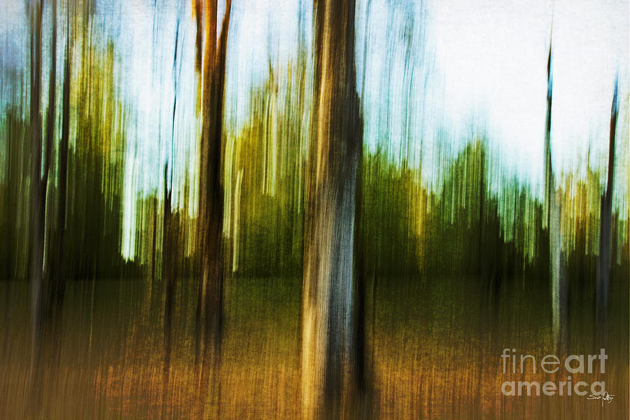 Abstract Photograph - Abstract 1 by Scott Pellegrin