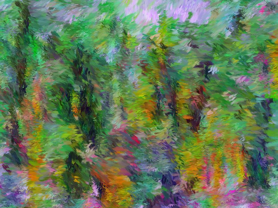 Abstract Digital Art - Abstract 111510a by David Lane