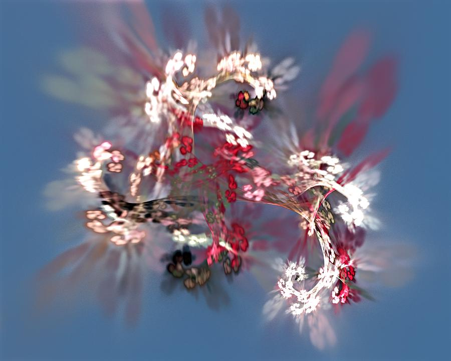 Floral Digital Art - Abstract Floral Fantasy  by David Lane