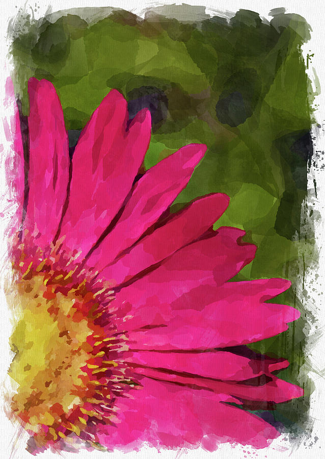 Abstract Flower Watercolor Xxii Photograph