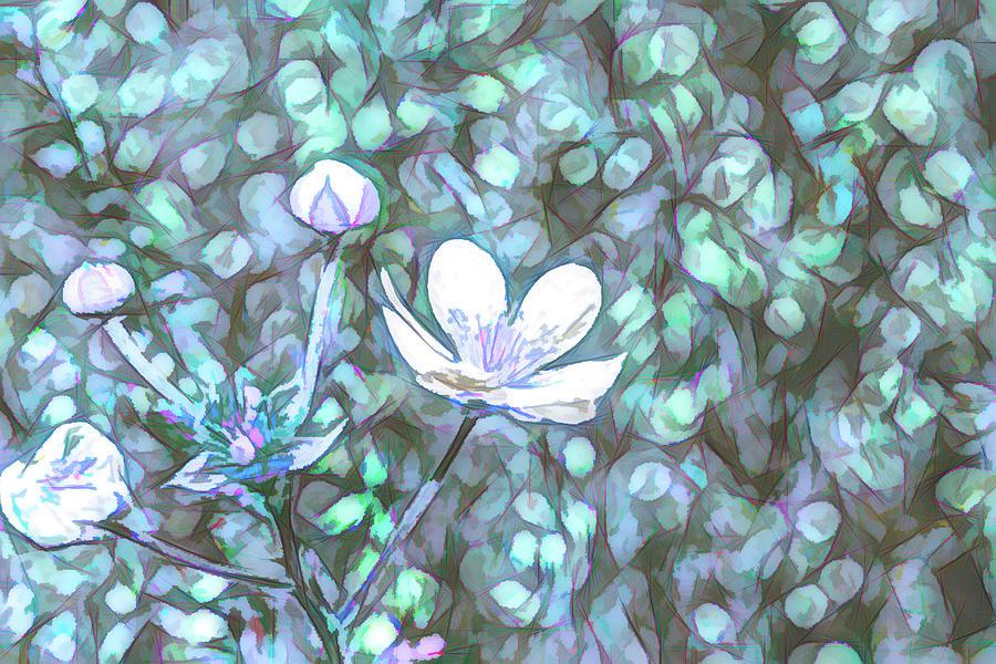 Abstract Flowers Sketch Digital Art