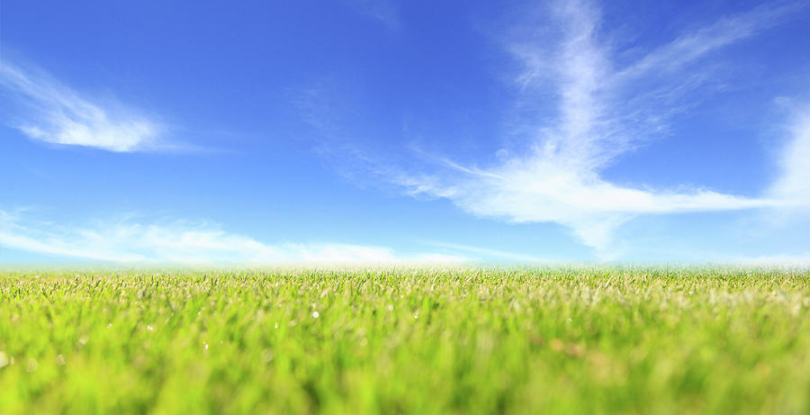 Field Photograph - Abstract Green Field And Blue Sky by George Tsartsianidis