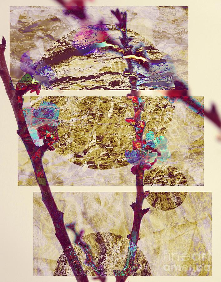 Abstract Japan Photograph by Robert Ball - photo #43