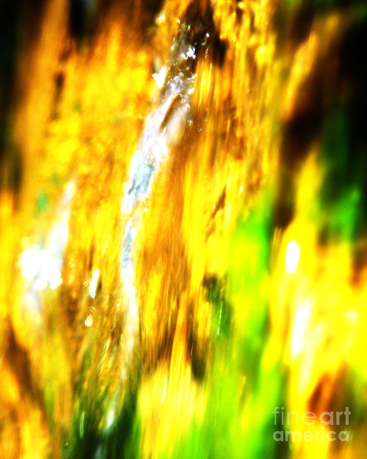 Digital Photograph Photograph - Abstract No.15 by Mic DBernardo