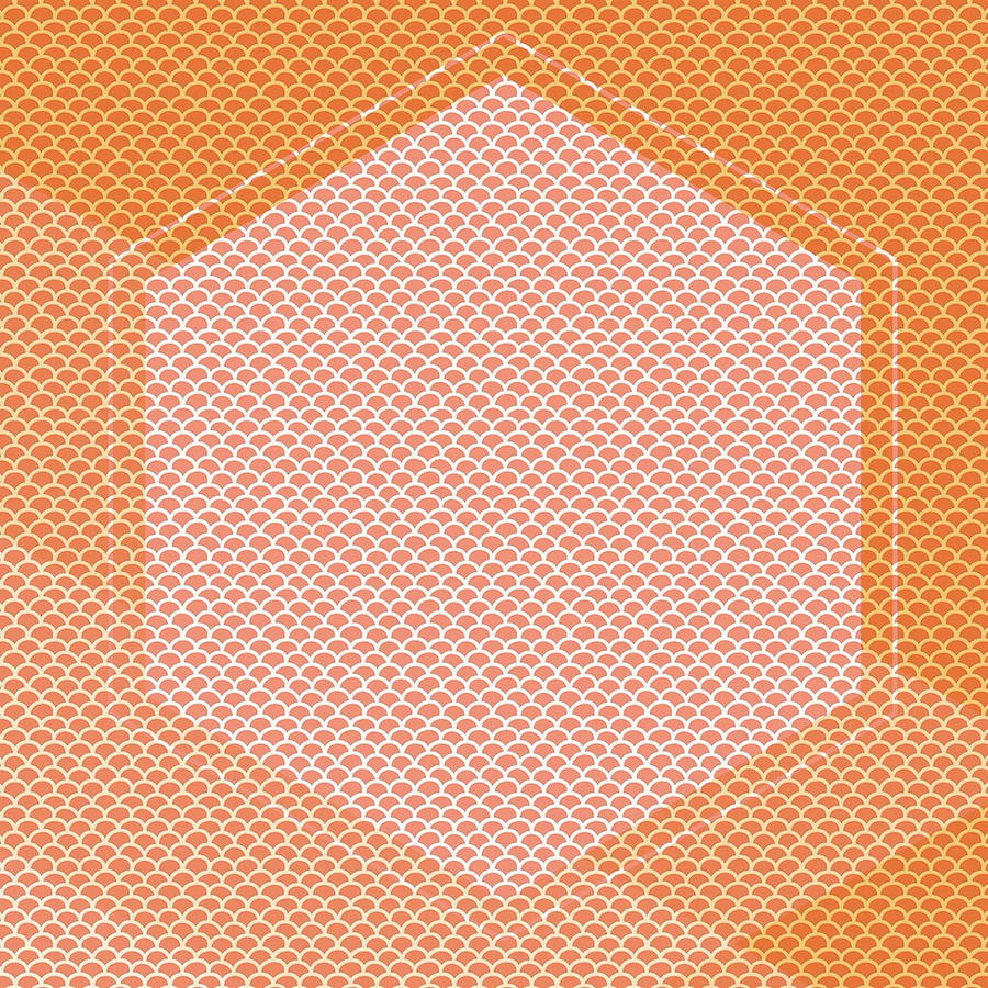 Brandi Fitzgerald Digital Art - Abstract Pink And Orange Hexagon by Brandi Fitzgerald