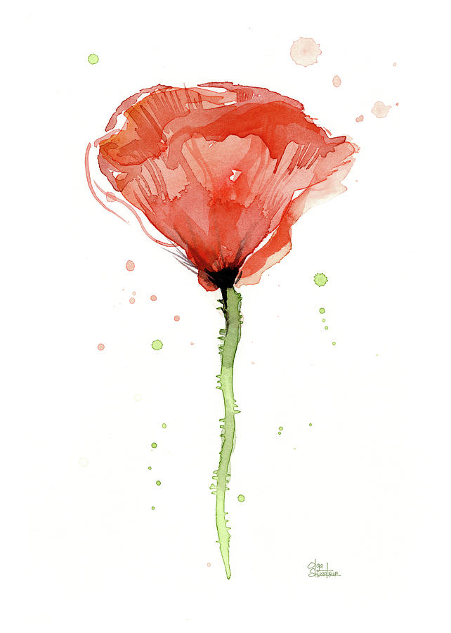 Watercolor poppy paintings fine art america watercolor poppy painting abstract red poppy watercolor by olga shvartsur mightylinksfo