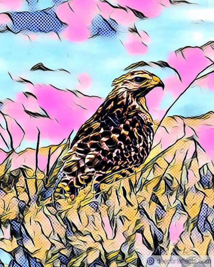 Abstract Red Tail Hawk Digital Art