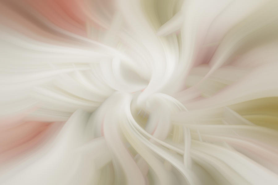 Abstract Softness by Diane Dugas