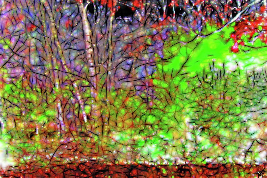 Abstract Sunlight on Trees by Gina O'Brien