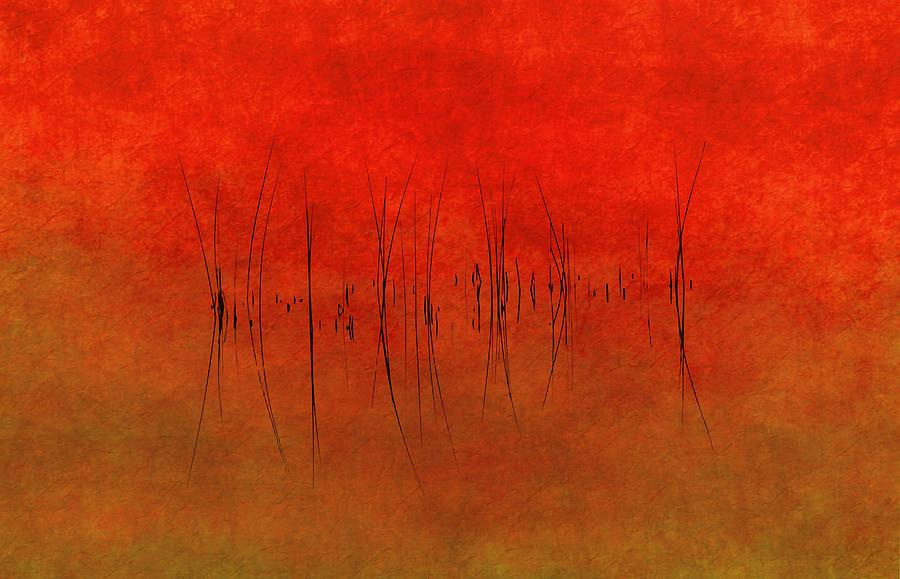 Abstract Photograph - Abstract Sunset  by Andrea Kollo