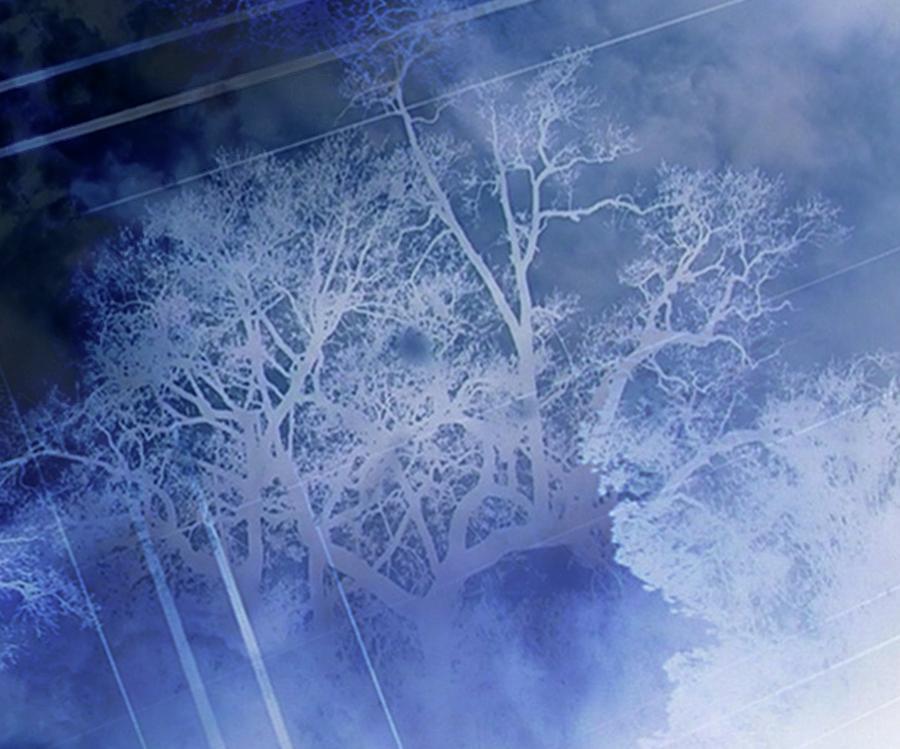 Kristinsharpe Digital Art - Abstract With Creepy Tree- Ghost Story by Kristin Sharpe