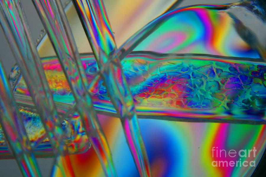 Abstract Photograph - Abstraction In Color 2 by Crystal Nederman