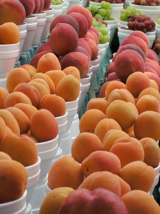 Fruit Photograph - Abundant Fruit by Sheri Gundry