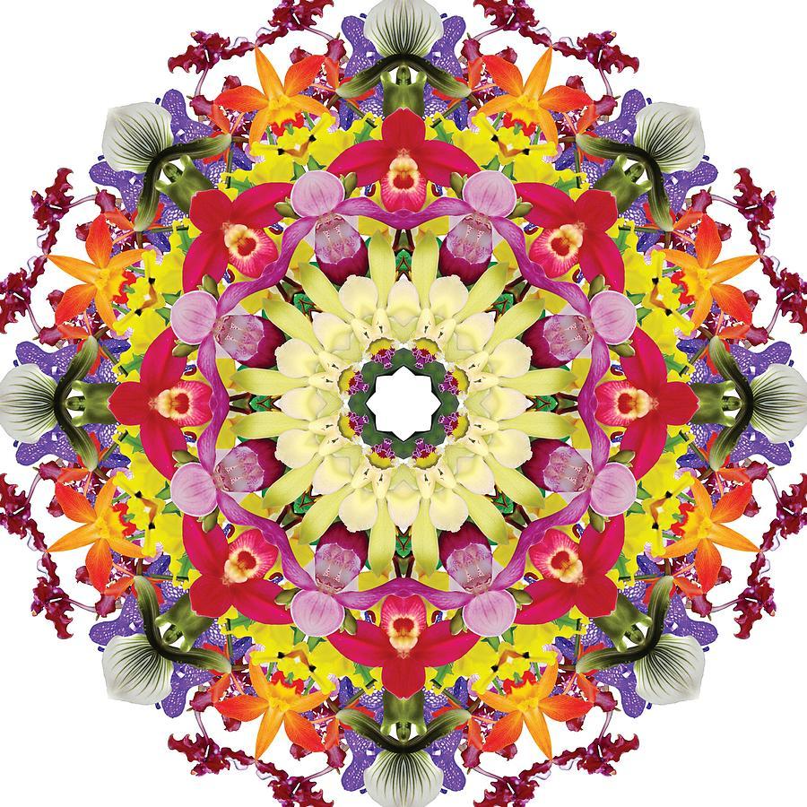 Mandala Photograph - Abundantly Colorful Orchid Mandala by R V James
